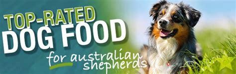 best food for australian shepherd what is the best food for an australian shepherd