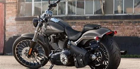 Ufc Harley Davidson by Ufc Fighter Carla Esparza Is Selling Harley Harley