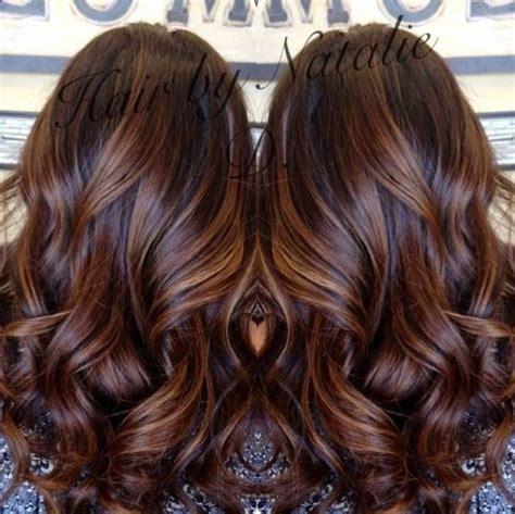 cinnamon brown hair color cinnamon brown hair luxury fresh pink highlight in brown
