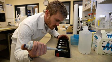 tattoo removal annapolis dal phd student develops to speed fading of