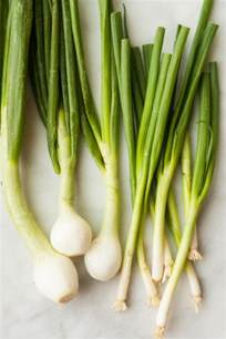 difference between scallions and green spring onions the kitchn
