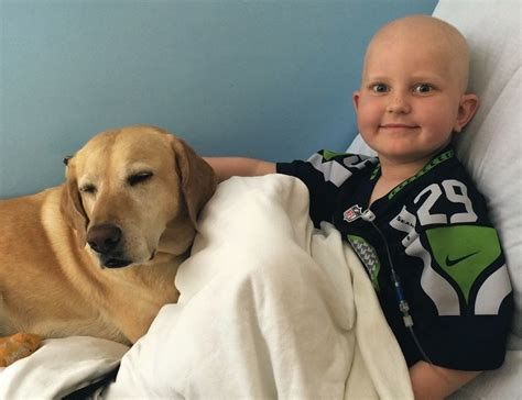 therapy dogs for depression new study proves the healing power of therapy dogs for children with cancer