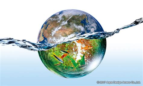 Ada The International Aquatic Plants Layout Contest 2015 iaplc 2017 news