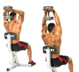 Bench Press Using Dumbbells by Exercises To Get Perfectly Shaped Triceps Gym Guider