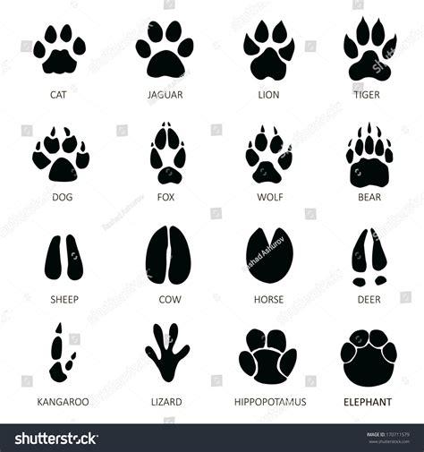 printable animal feet animals footprints stock vector 170711579 shutterstock