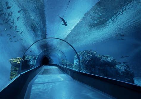 mar lights led lighting for aquarium orphek