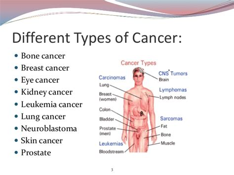 types of cancer cancer