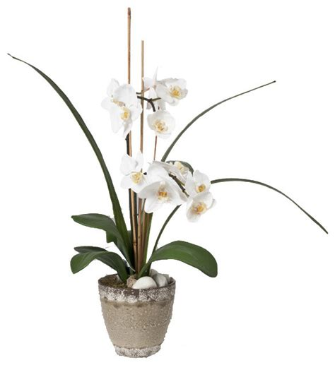 Orchid Planters Pots by Orchid In Ceramic Pot Modern Artificial Flowers By