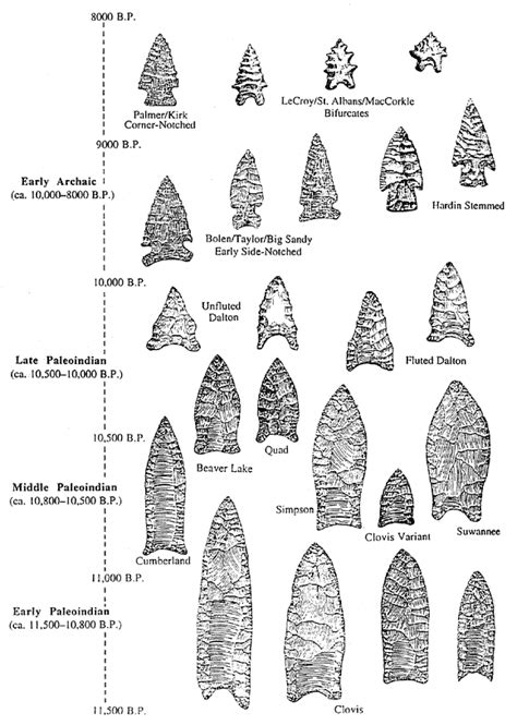 different virgina styles file projectile point types png wikimedia commons