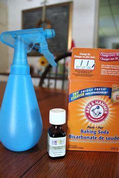 In Air Freshener Migraine All Air Freshener I My Living Oils