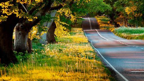imagenes de paisajes naturales fotos de paisajes naturales panor 225 micas de paisajes