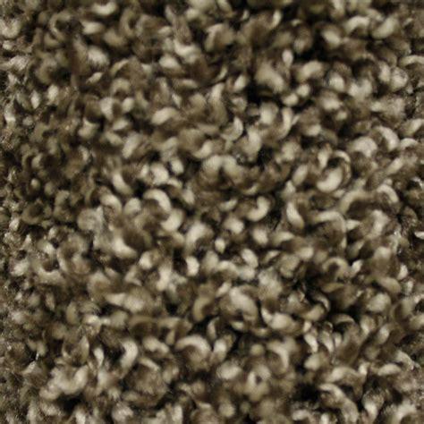 home decorators carpet home decorators carpet 28 images home decorators