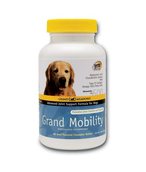 grand dogs grand grand mobility sports