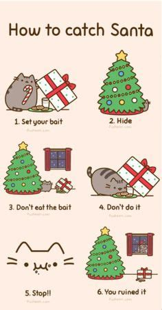 taco pusheen pusheen pinterest pusheen pusheen cat  cat