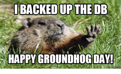 groundhog day you don t me groundhog day you don t me 28 images backedup the db