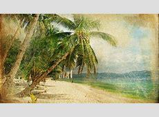Vintage Palm Tree Wallpaper
