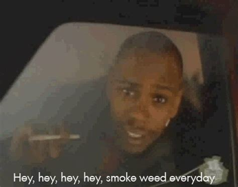 image  smoke weed everyday   meme