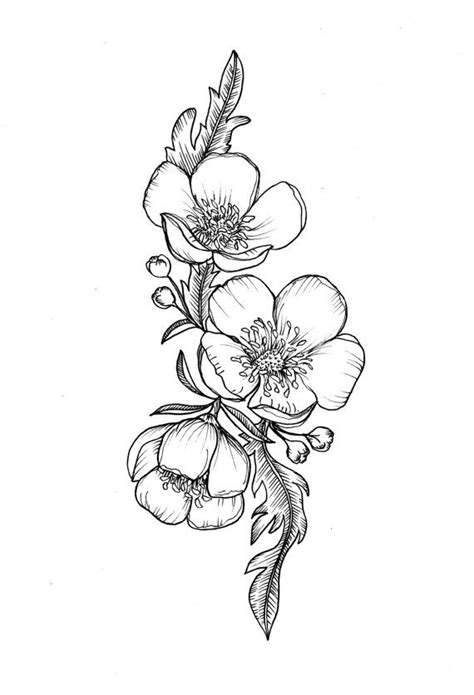 buttercup flower tattoo designs custom buttercup illustration for greer by