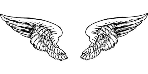 tattoo wings png image vectorielle gratuite ailes ange black blanc