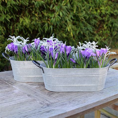 Wire Garden Planters by Metal Garden Planter By Lilly Notonthehighstreet