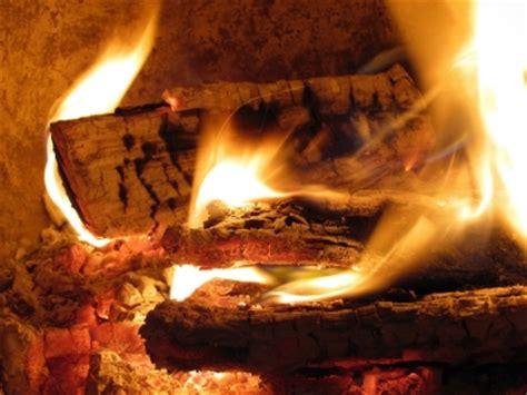 Birkenholz Verbrennen by Brennholz Teil 2 Verarbeitung Und Verbrennung