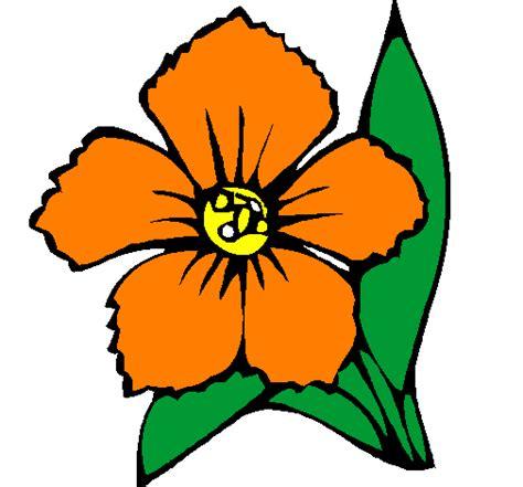 fiore disegno disegno fiore colorato da utente non registrato il 05 di