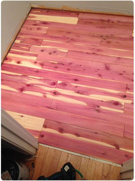 Cedar Planking For Closets by 25 Best Ideas About Cedar Closet On Cedar