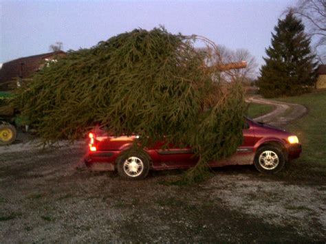 griswold car with christmas tree pics find the tree at whispering pines tree farm