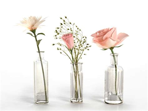 Flowers Glass Vase by Glass Vases With Flowers