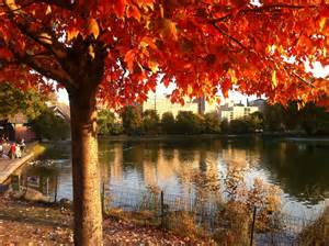 In Fall fall weather images how to talk about fall weather in spanish living