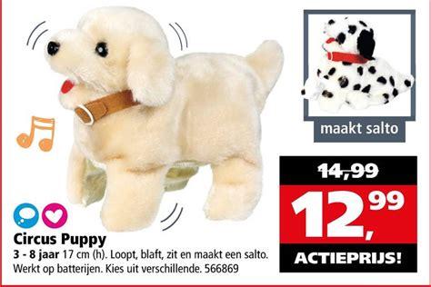 speelgoed hond die loopt en blaft loophondje folder aanbieding bij intertoys details