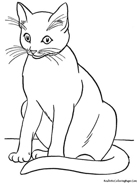 Picture Of A Cat To Color by Realistic Coloring Pages Of Cats Realistic Coloring Pages