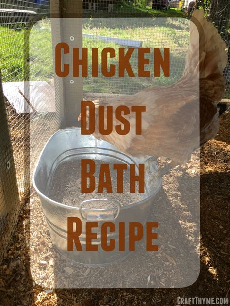 how to bathe a how to make a chicken dust bath craft thyme
