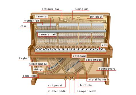 inside a piano diagram terminology what is the word for the panel on a piano