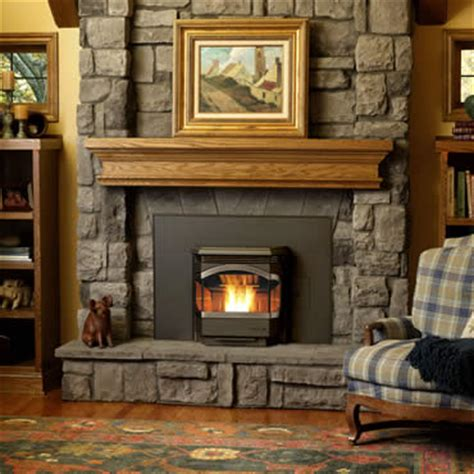 Affordable Gas Fireplace Inserts Pellet Stove The Best Pellet Stoves And Inserts