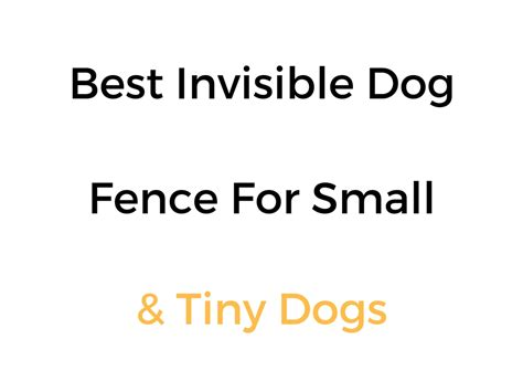 best underground fence best invisible fence for small dogs in ground wireless options