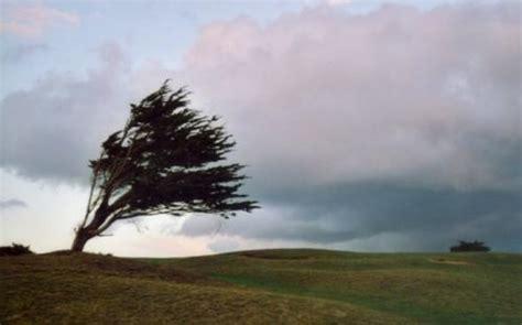 le vent solarmad solarmad