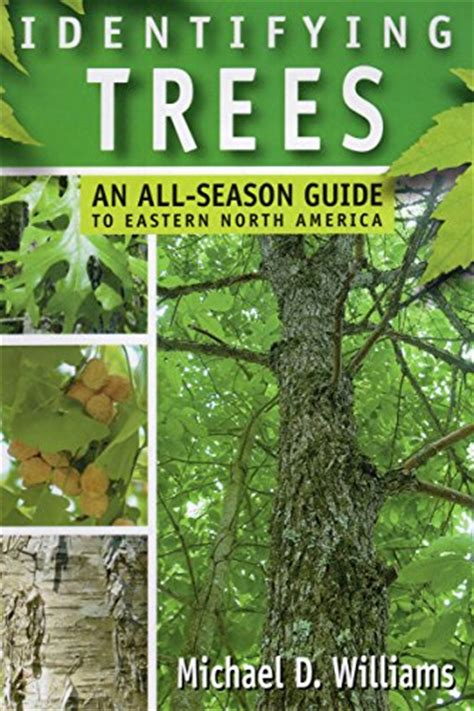 tulip trees books tulip tree the indiana state tree