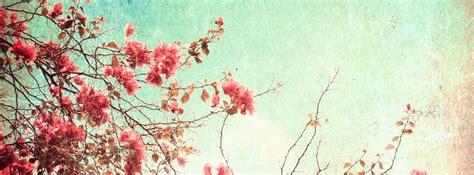 15 awesome facebook cover photo for girls