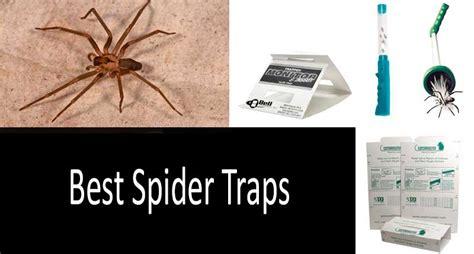top 4 best spider traps