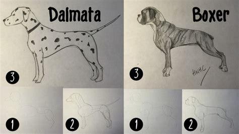 como un perro dibujos a lapiz faciles de perros www pixshark com