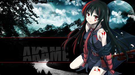 wallpaper with anime theme 252 akame ga kill hd wallpapers backgrounds wallpaper