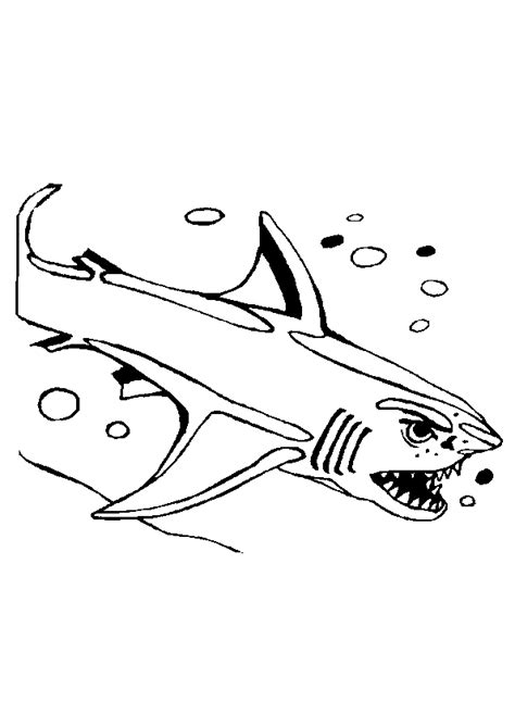 Coloriage Requin Attaque Sur Hugolescargot Com Dessin De Requin Blanc Colorier L