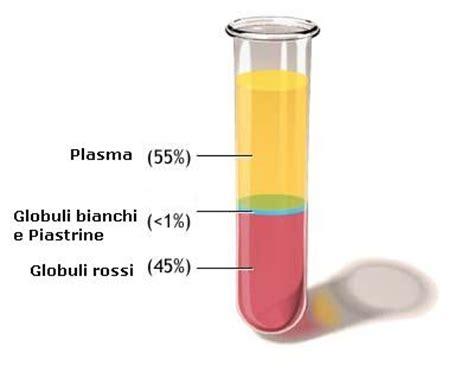 test coagulazione la diagnostica di laboratorio di base negli esami della
