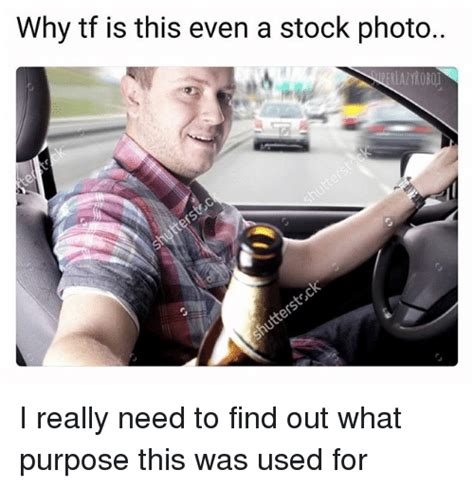 Photo Meme - why tf is this even a stock photo lazyrobo i really need
