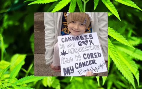 cannabis helps treat young cancer patient  oregon