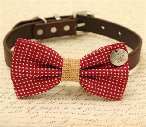 bow tie for dogs 25 best ideas about bow ties on bow tie hair fabric bows and tie a