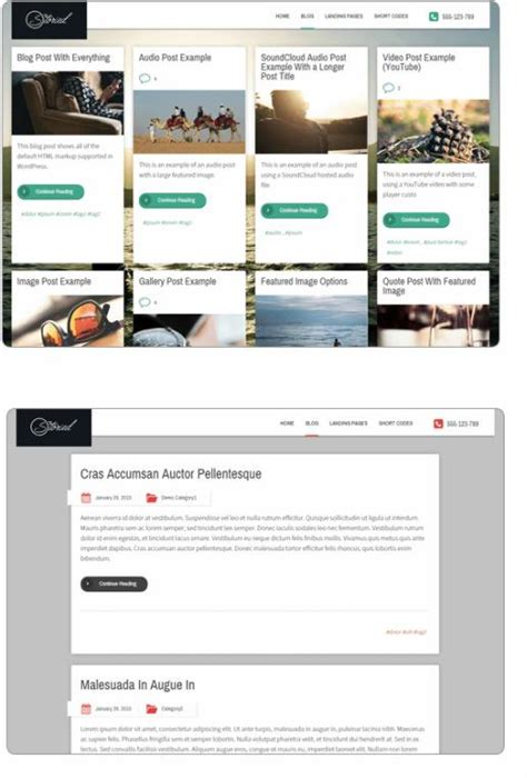 thrive themes background video thrive themes storied review blog theme good