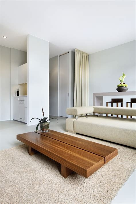 interior with minimalism shows the best rational