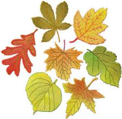 free fall machine embroidery designs advanced embroidery designs fsl autumn leaves set